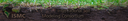 topimage_soilprofile.png